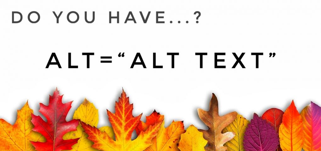 Do you have Alt Text?